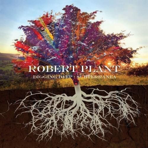 RobertPlantCD