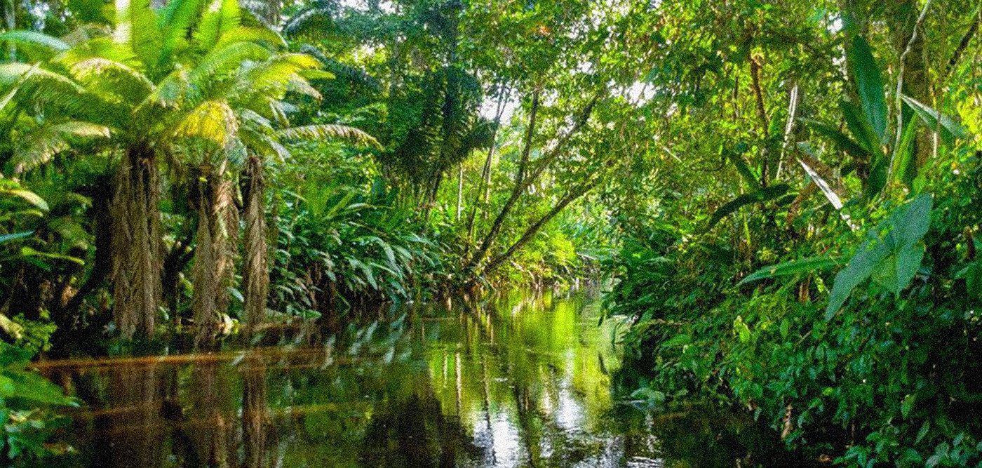 Αμαζόνιος: Θέμα κεντρικής και παγκόσμιας σημασίας